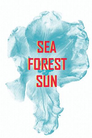 FINISSAGE // SEA, FOREST, SUN