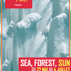 affiche Exposition Collective SEA, FOREST, SUN