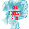 affiche FINISSAGE // SEA, FOREST, SUN